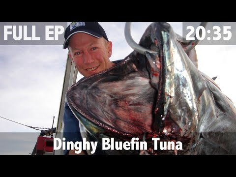 BLUEFIN TUNA ON A HANDLINE FROM A DINGHY