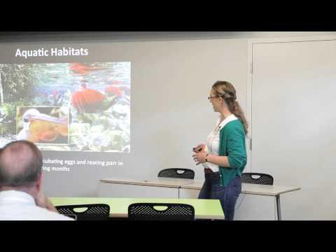 Freshwater and Riparian Ecosystem Response - Ingrid Tohver