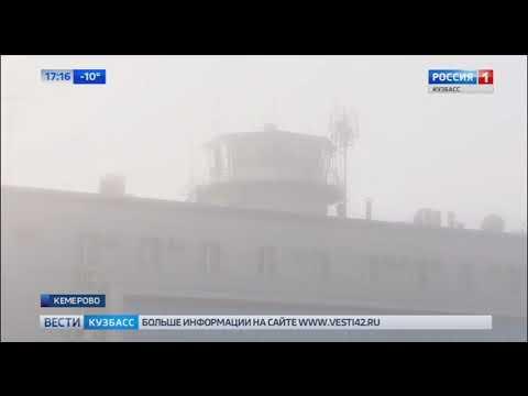 Работников кемеровского аэропорта обвинили в краже необычного багажа