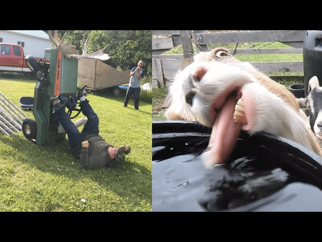 Meanwhile, Back on The Farm: Farm Fails | FailArmy