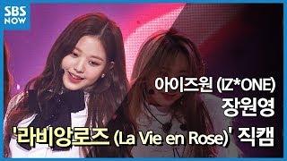 SBS  - 아이즈원 '장원영' 라비앙로즈(La Vie en Rose) 직캠 / SBS 'INKIGAYO' IZ*ONE 'Jang Wonyoung' FanCam