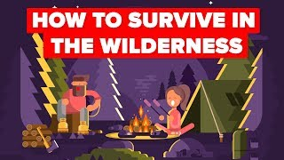 What You Should Do To Survive In The Wilderness