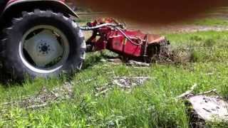 Green Grop Farming Ghana- testing Seppi M Stump Grinder in Italy