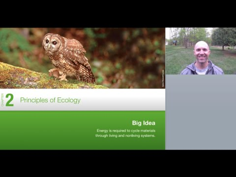 Ecology Lecture: Ch. 2 Principles Of Ecology Lesson Plan