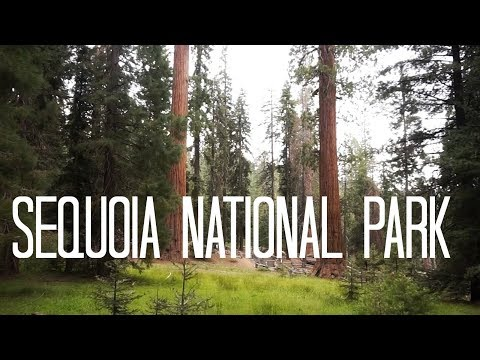 Sequoia and Kings Canyon National Park | National Parks Adventure 2017