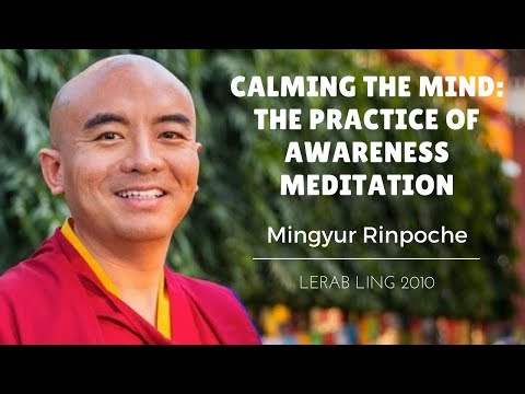 mingyur-rinpoche-~-calming-the-mind:-the-practice-of-awareness-meditation