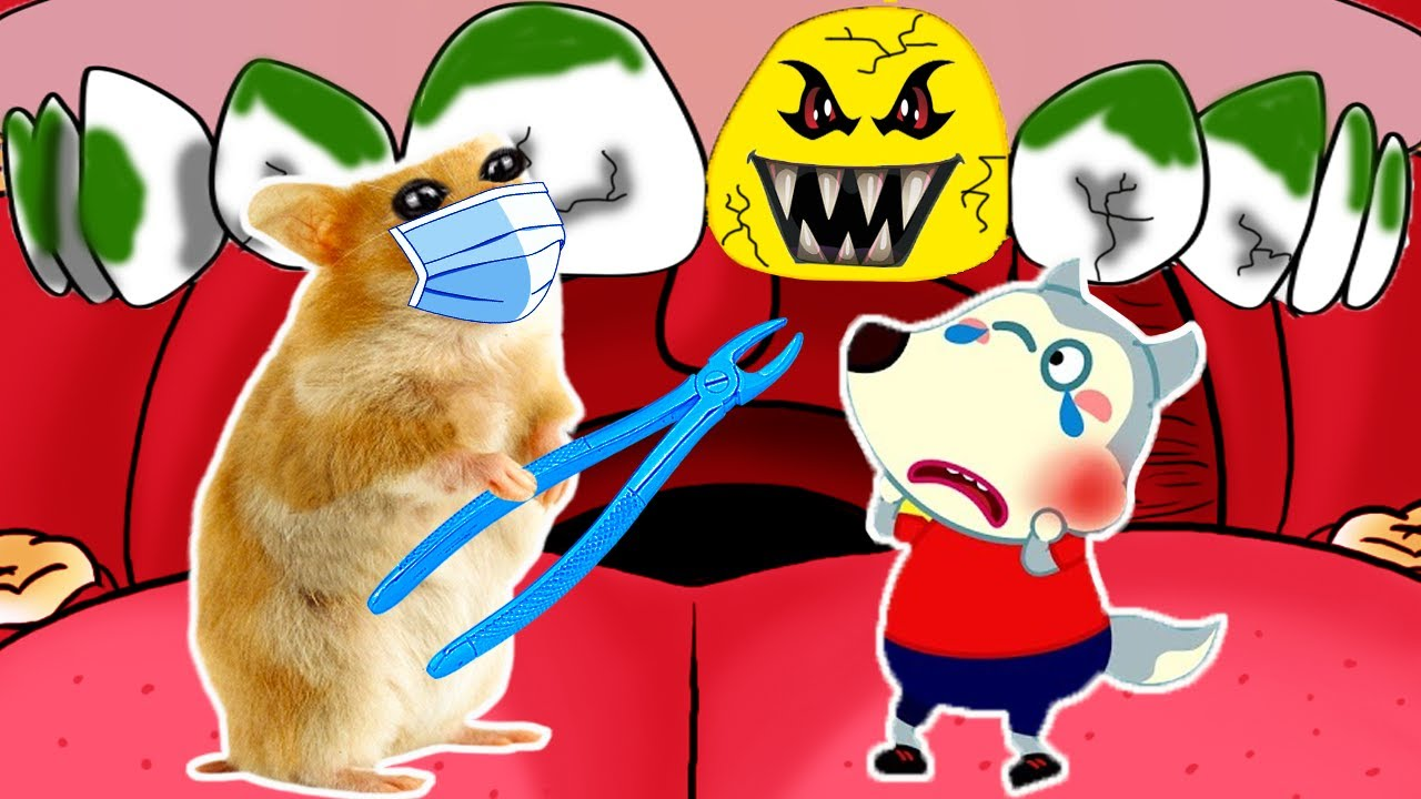 Oh No, Wolfoo Caries! Doctor hamster help wolfoo in real life 🐹 in Hamster Stories