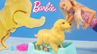 Barbie Yeni Doğum Yapan Köpek | Yeni Barbie Oyuncak Videoları | Evcilik TV