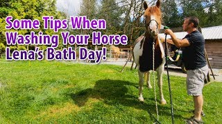 Some Tips When Washing Your Horse, Lena's Bath Day! thumbnail