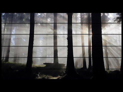 TheNoimio - Trend Mania (Music Video)