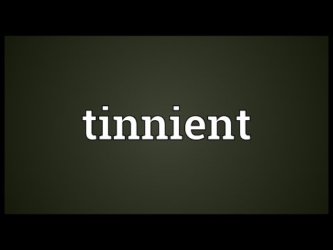 Header of tinnient