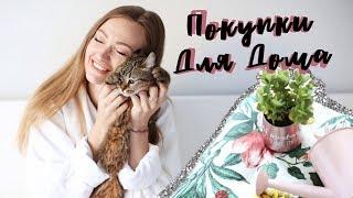 видео Купить подарки и сувениры для дома и интерьера, цены на подарки для домашнего уюта в Москве