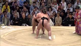 「大相撲春場所 14日目」(21日、ボディメーカーコロシアム) 13...