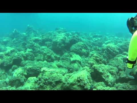 Diving at Turgutreis, Bodrum 2
