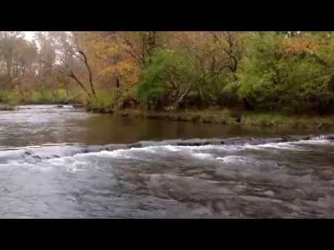 Nature Sounds ASMR Relaxing Ambient Outdoor
