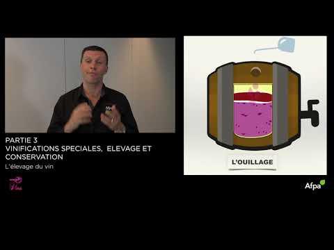 UA3 - Vidéo 10 - L'elevage du vin