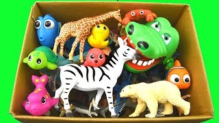 - Learn Colors With Wild Animals in a Box and Shark Toys For Kids
