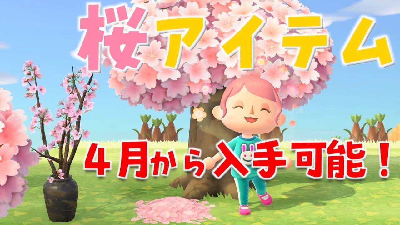 桜の 花びら あつ 森