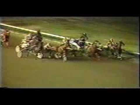 Harness Horse Racing accident from Los Alamitos California ...