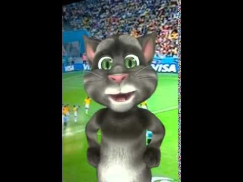 El gato Tom opina sobre el partido de Colombia y Brasil