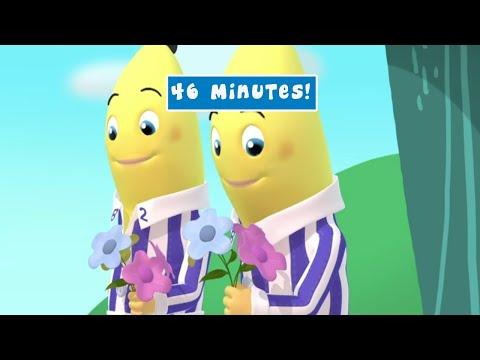 Valentines Day Compilation - Bananas in Pyjamas Full Episode - Bananas in Pyjamas Official