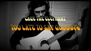 Too Late To Say Goodbye - Cage The Elephant [Cover]
