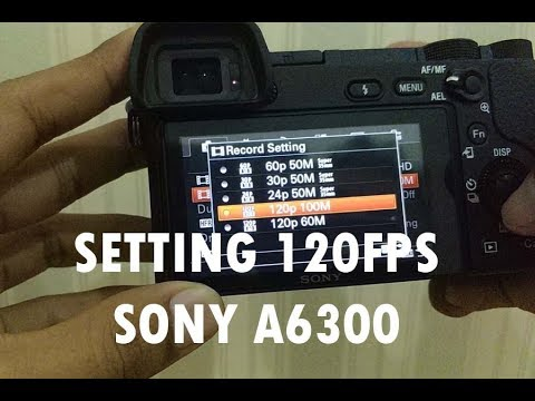 sony handycam frame rate
