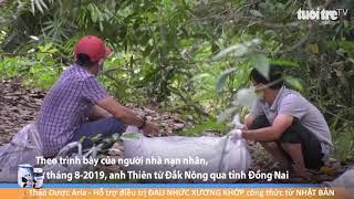 Kinh hoàng phát hiện thi thể ko đầu đang phân hủy trong rừng cao su Bình Phước