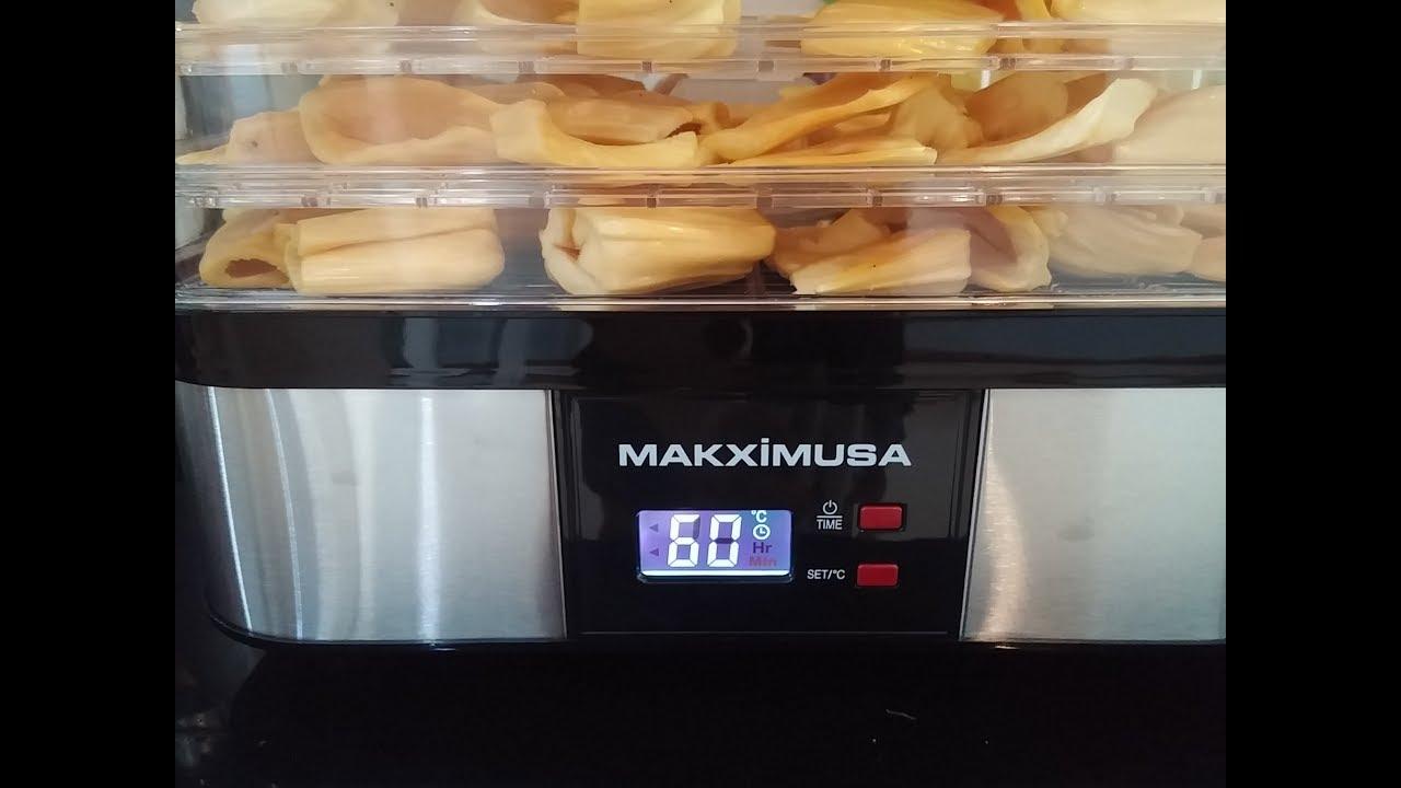 Review máy sấy hoa quả thực phẩm Makxim USA 250W
