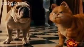 Garfield cat movie Tamil dubbed funny video