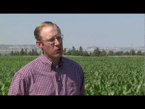 Range and Pasture Conditions in Western Nebraska - Market Journal - July 6, 2012