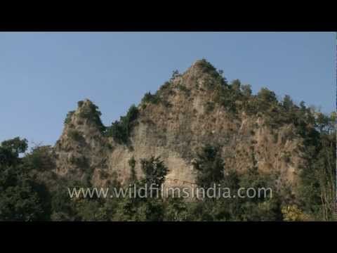 Ancient Shivalik hills in Rajaji National Park near Dehra dun