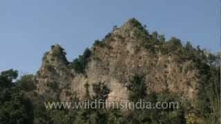 Ancient Shivalik hills in Rajaji National Park near Dehra dun