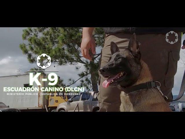 Escuadrón Canino DLCN, orgullo del #MP