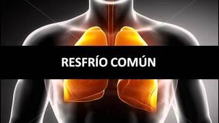 Resfrío Común - Fisiopatología respiratoria