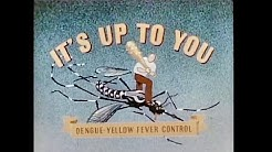 It's Up to You: Dengue-Yellow Fever Control, 1945