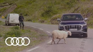 Trailer 2019 Audi SQ8 TDI | the sporty top model of the Q family