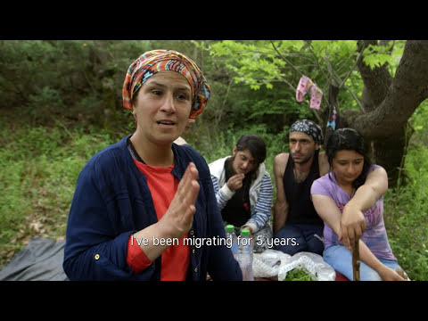 Changing the Narrative: Positive Discourse on Refugees and Migrants