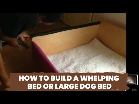 How to build a whelping bed or large dog bed youtube for Make a cat bed out of a box