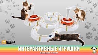 Интерактивные игрушки для кошек и котят · Ferplast