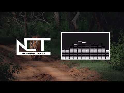Hreez - Mellowcat [Ninety9 Lives / NCT Release]