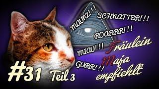 Katzensprache - Teil 3 - Lästern Katzen? Katzen verstehen? SONDERFOLGE #031