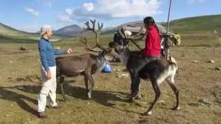 riding reindeer in mongolia