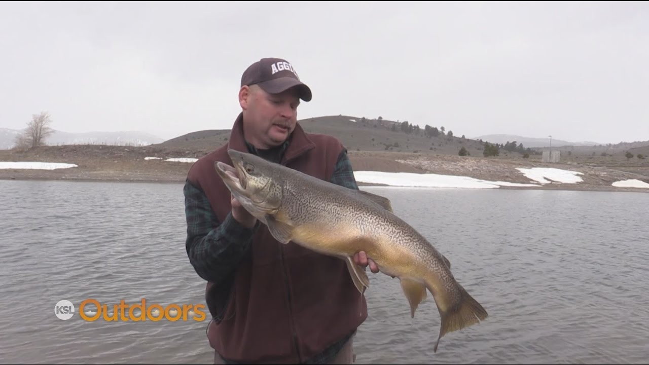 Big tiger trout at panguitch lake ice off youtube for Panguitch lake fishing report