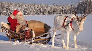 Деревня Санта-Клауса - Лапландия - Рованиеми(Деревня Санта-Клауса - Лапландия - Рованиеми - Финляндия - Туризм. LINK: http://www.santatelevision.com/, 2012-01-11T12:05:06.000Z)