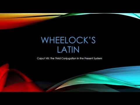 Chapter 8Rutgers Latin 101 Online Spring 2017