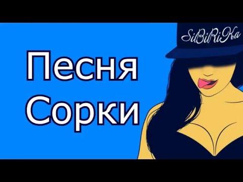 видео: sibirika - песня сорки panzar