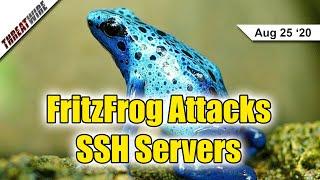 New Botnet Hits SSH Servers; Bernie Calls For Nationwide Biometric Privacy - ThreatWire