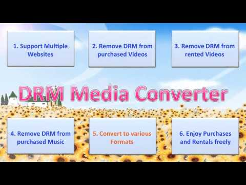 Introducing DRM Media Converter (Remove DRM and Convert Video/Audio on Windows)