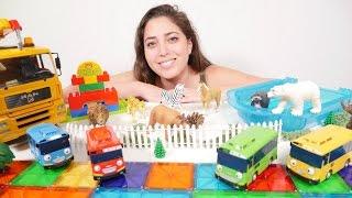 Animales para niños.🚌🚌Los AUTOBUSES Tayo van al Zoológico🚌🚌 Vídeo de juguetes